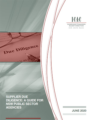 cover of the Supplier Due Diligence report